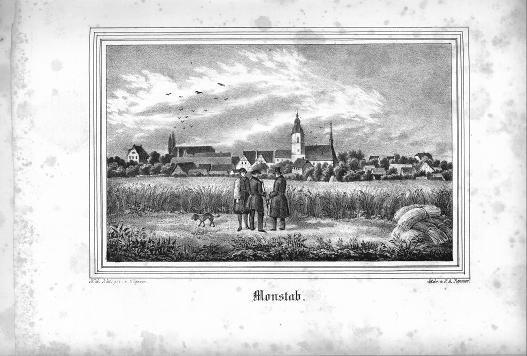 HisBest_derivate_00003042/Kirchen-Galerie_d_Herzogthums_Sachsen-Altenburg_233382526_0547.tif
