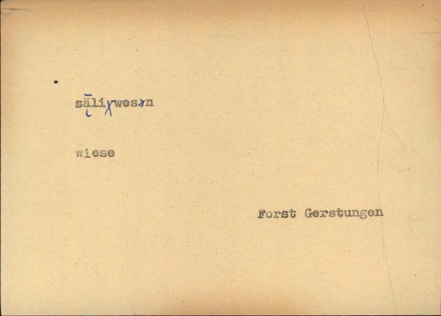 HisBest_derivate_00024577/Flurnamen_Erfurt_Eisenach_11693.tif